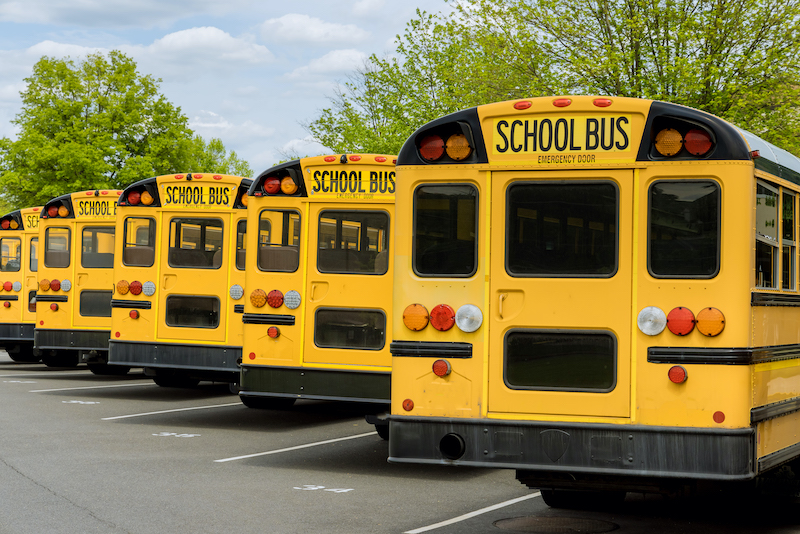 Row of yellow school busses parked.